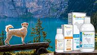Új, folyékony ízületvédők: BiogenicPet Liquid Arthro és BiogenicPet Cod Liver Oil