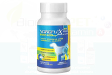 Noroflex 600+100 – új ízületvédő, porcregeneráló készítmény kutyáknak!