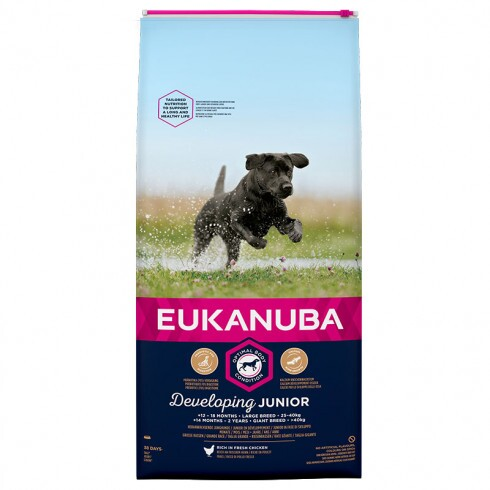 Eukanuba Junior Large 15kg